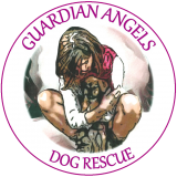 guardian-angels-logo